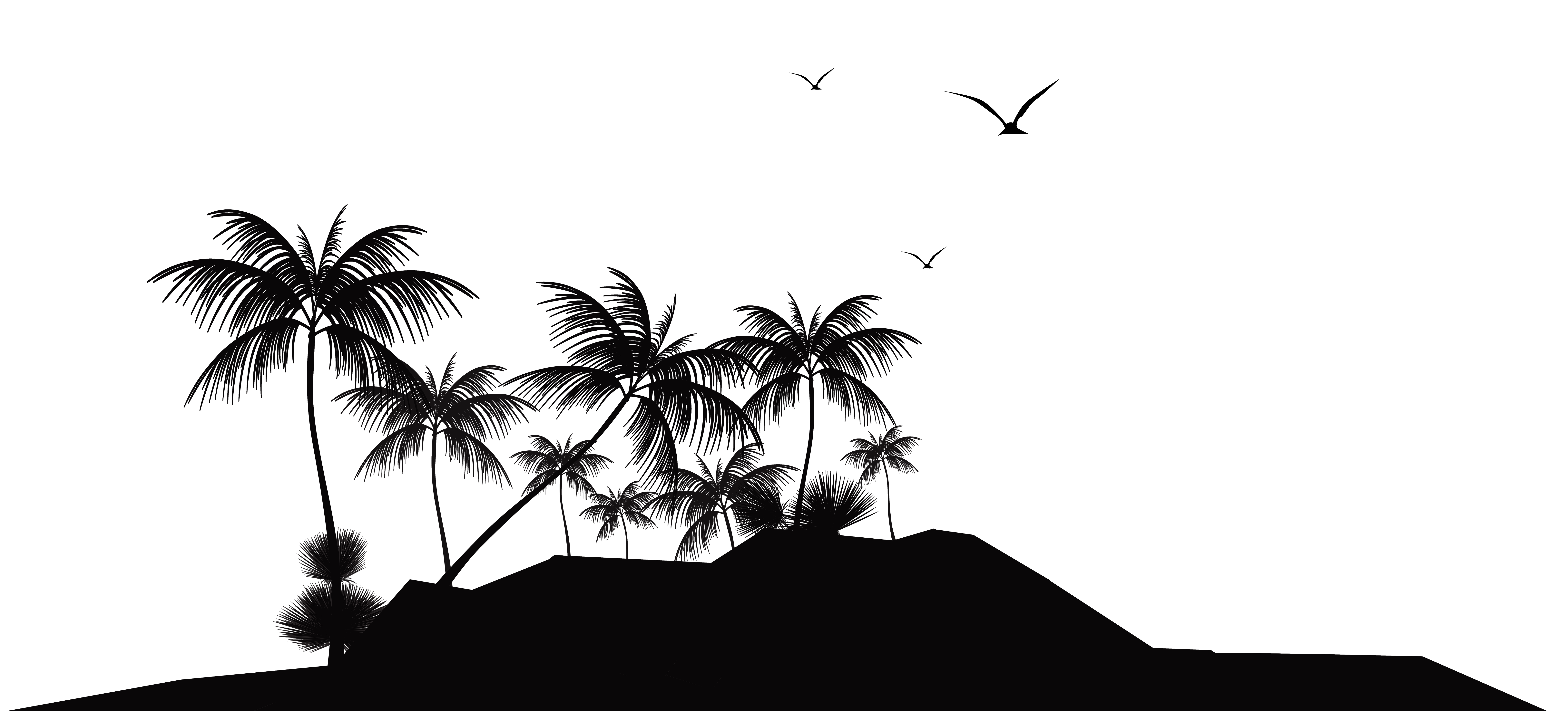 Tropical clipart black and white #14