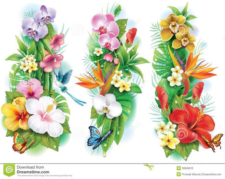 Caribbean clipart flower decoration Clipart PlantsTropical google on images