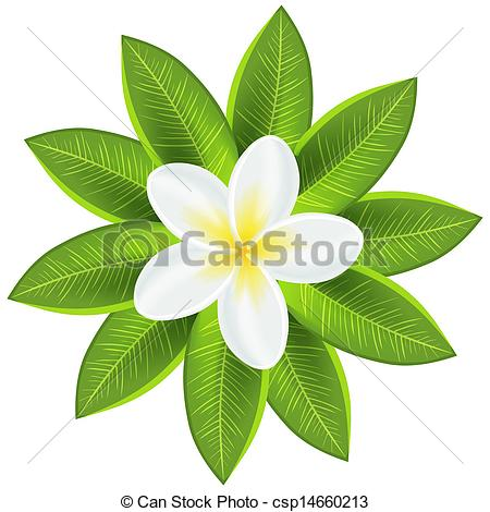 Tropical clipart green flower #5