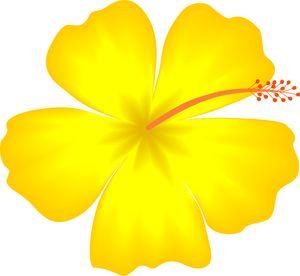 Tropics clipart yellow hibiscus #4