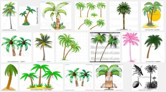 Trunk clipart coconut tree #5