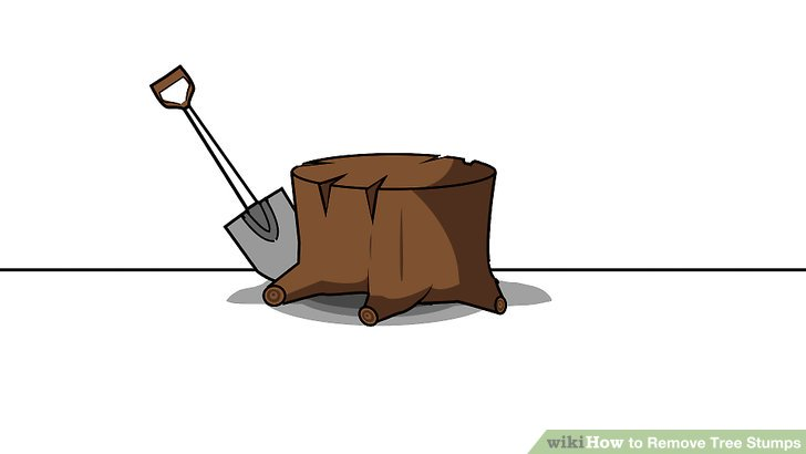 Trunk clipart tree removal #10