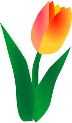 Netherlands clipart spring tulip Tulip Clipart Tulip Clip Art