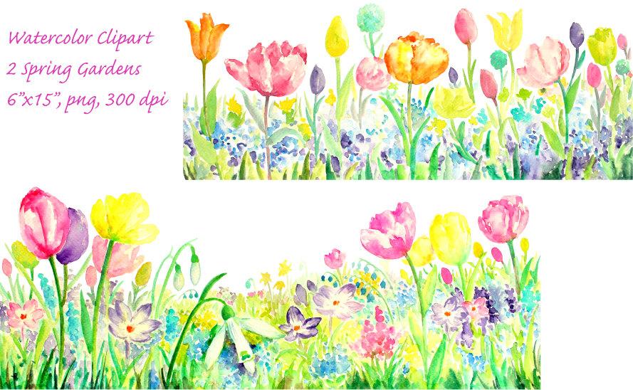 Tulip clipart border #9