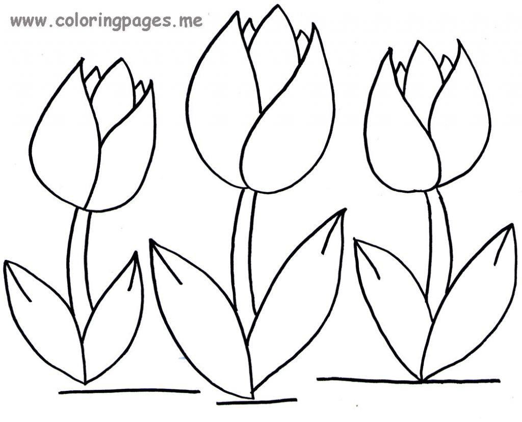 Tulip clipart colouring page #6