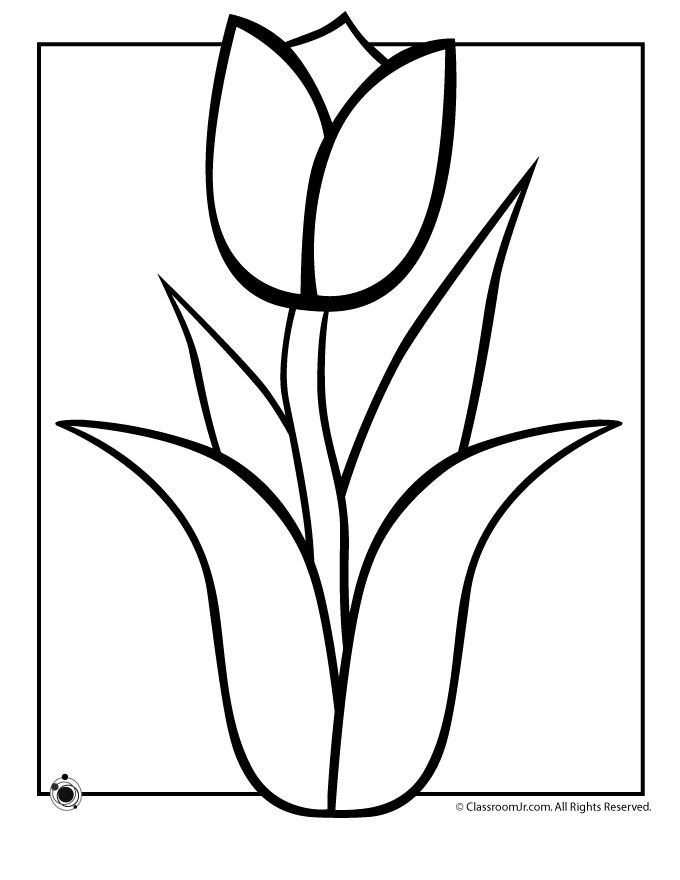 Tulip clipart colouring page #9