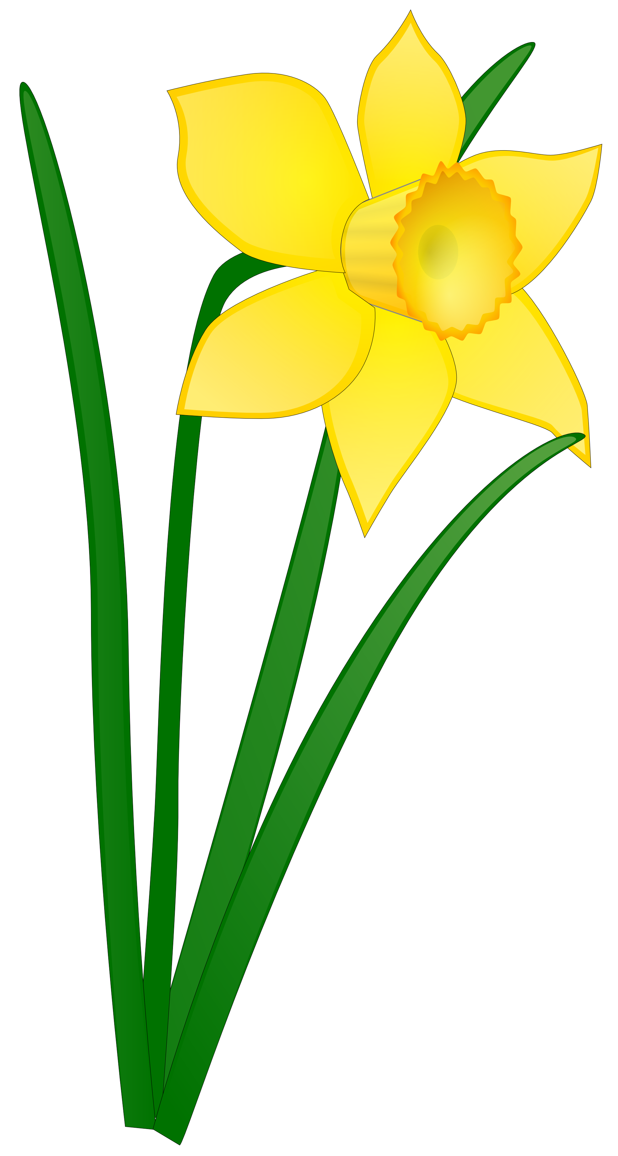 Yellow Flower clipart tall flower  Art Free Images Daffodil