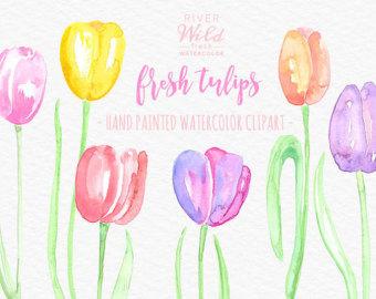 Tulip clipart pastel #6