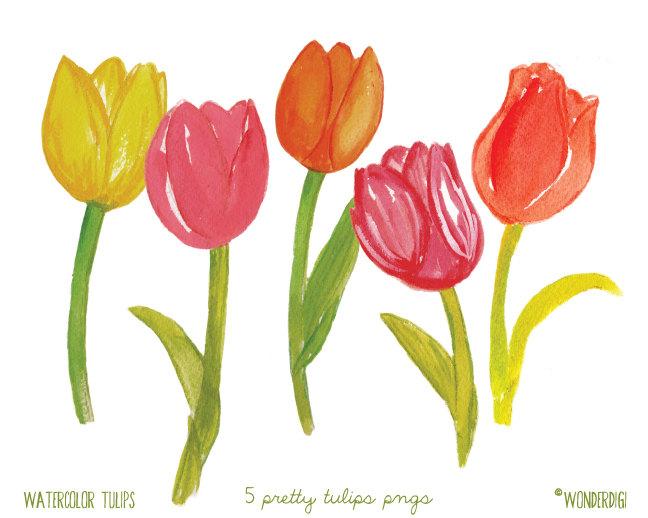 Tulip clipart pretty flower #3