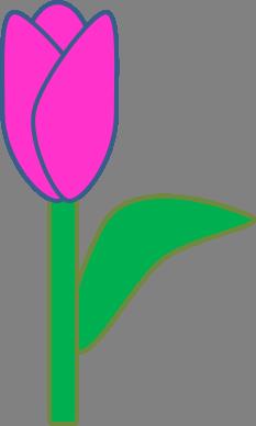 Tulip clipart purple tulip #8