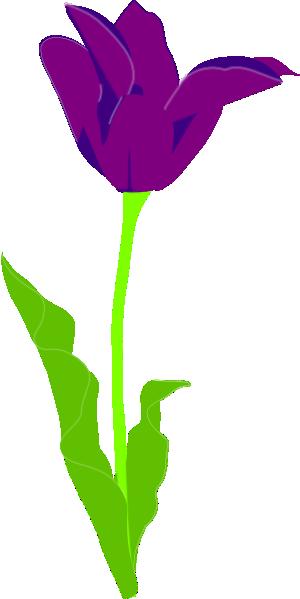 Tulip clipart purple tulip #9