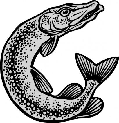 Tuna clipart ikan #6