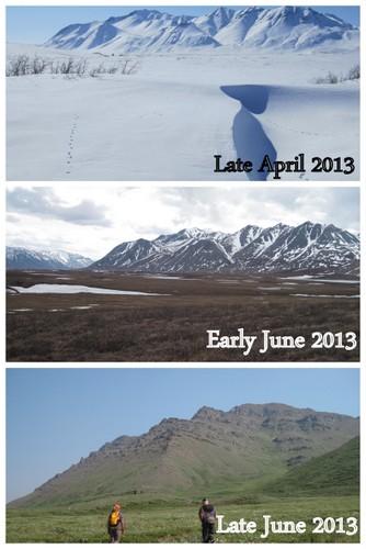 Tundra clipart arctic landscape #6