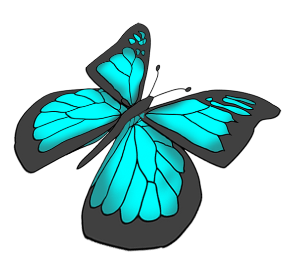 Turquoise clipart beautiful butterfly #9