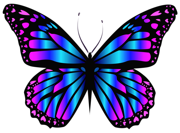 Turquoise clipart purple butterfly #14