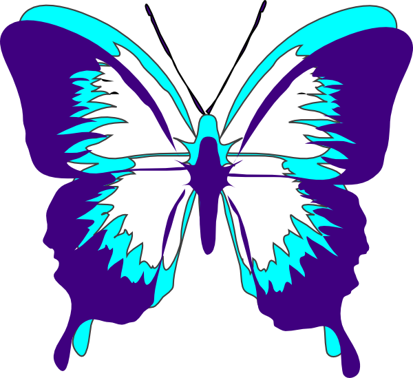 Turquoise clipart purple butterfly #9