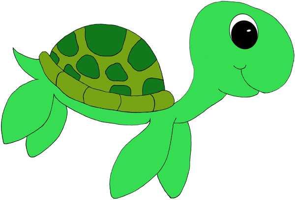 Turtoise clipart green turtle #1