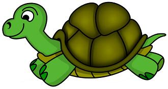 Turtle clipart cool cartoon Free Turtle Turtle Clipart Clip