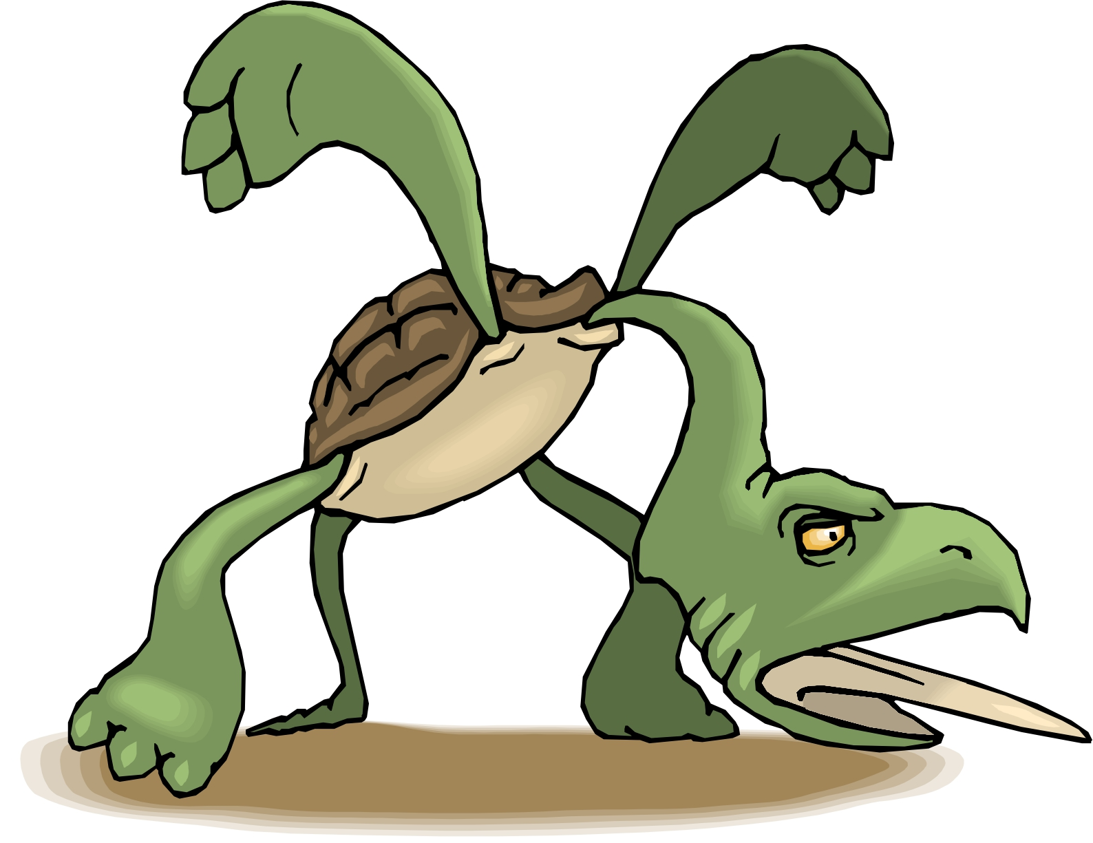 Turtle clipart angry #8