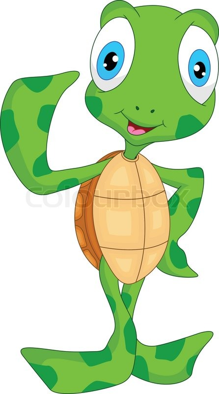 Sea Turtle clipart turtle face #7