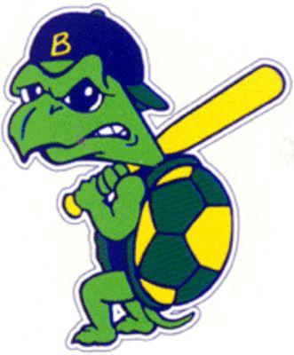 Turtle clipart baseball #6