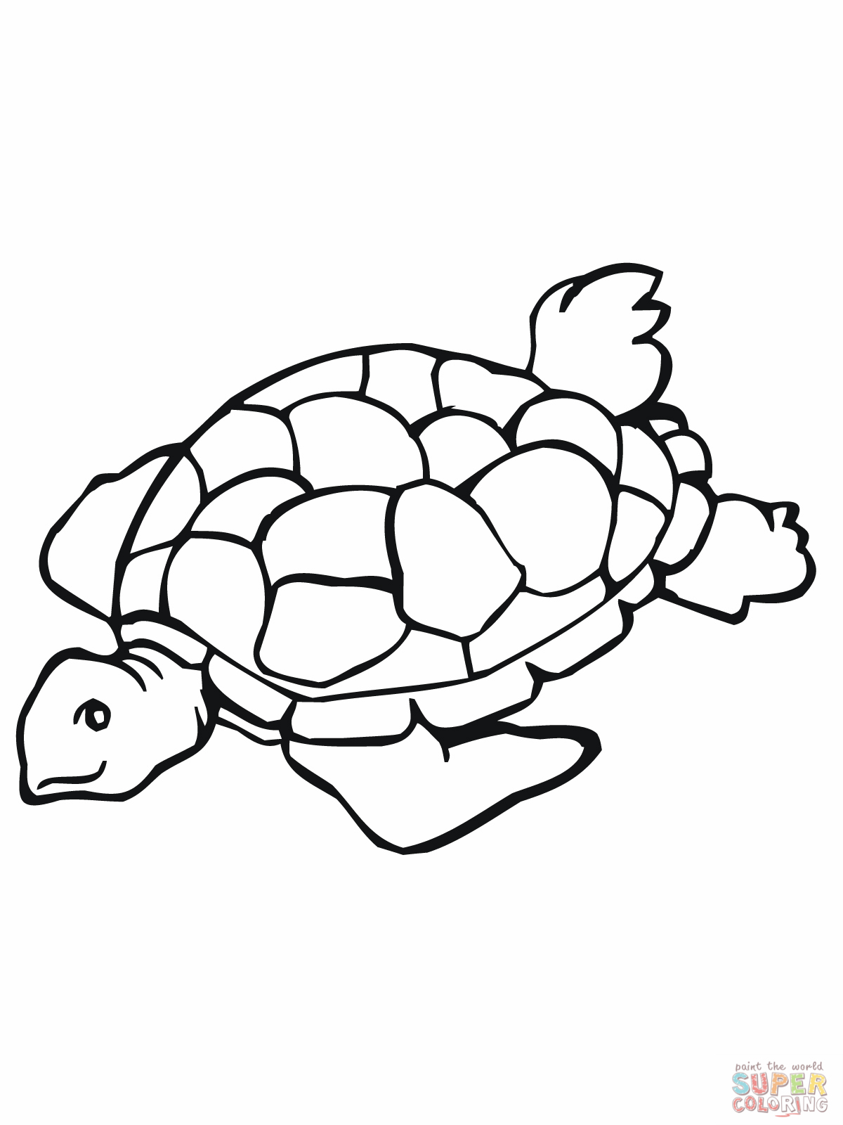 Tortoise clipart coloring page #4