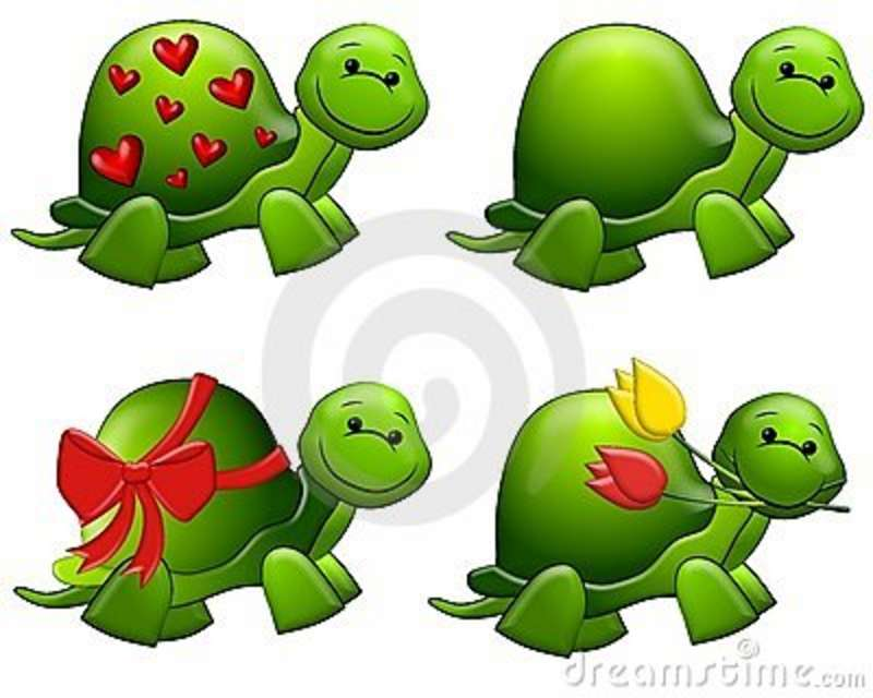 Turtle clipart cool cartoon Turtle Cricut art turtle Google