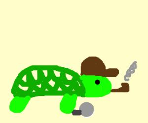 Turtle clipart detective #13