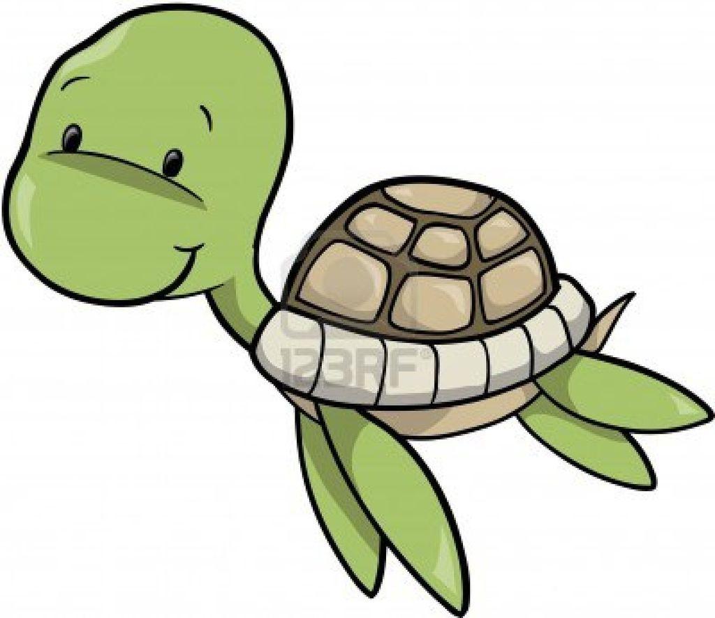 Sea Turtle clipart box turtle #8