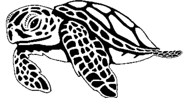 Turtle clipart hawaii #8