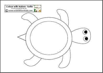 Turtle clipart nature #11