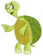 Turtle clipart nature #3
