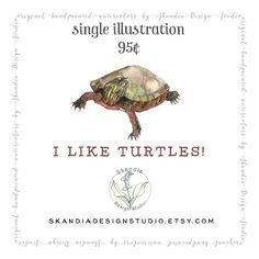 Turtle clipart nature #5