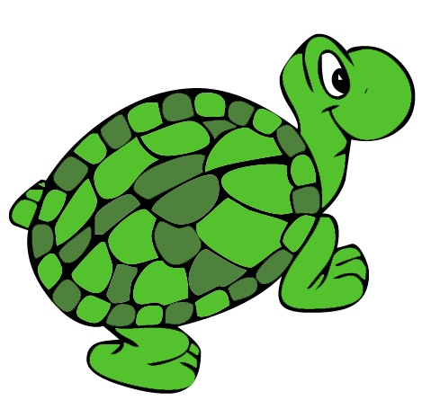 Pet clipart green turtle Turtle BBCpersian7 Turtle Clipart Free