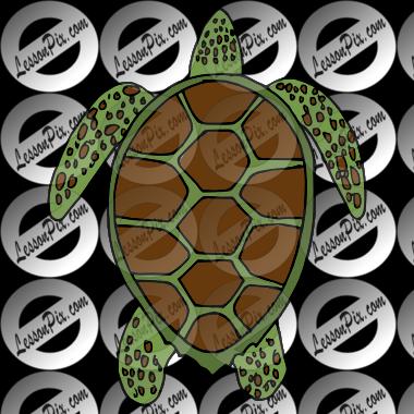 Turtle clipart sea plant #3