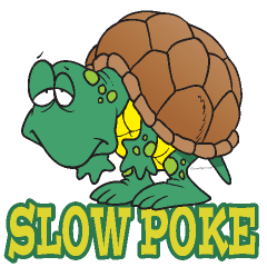 Turtle clipart silly #10