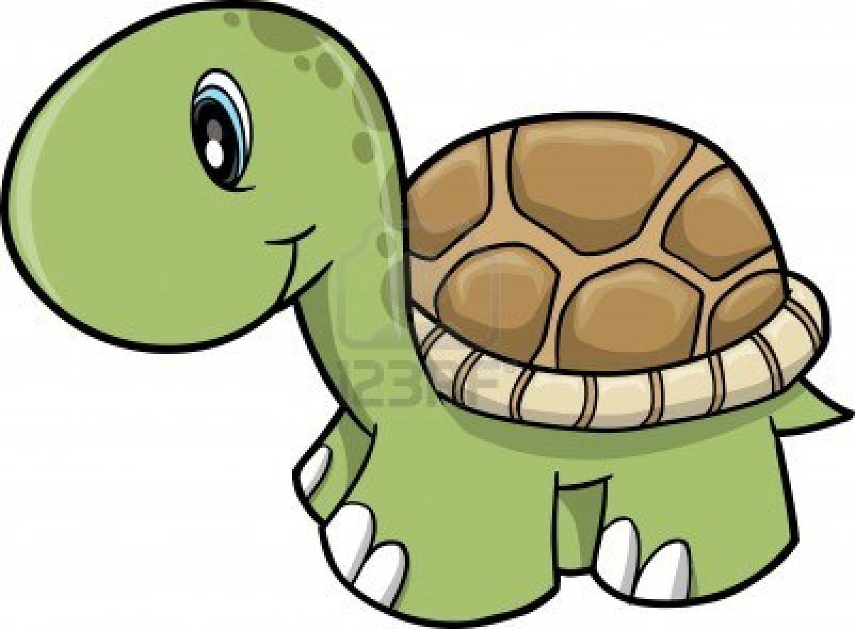 Sea Turtle clipart funny #7