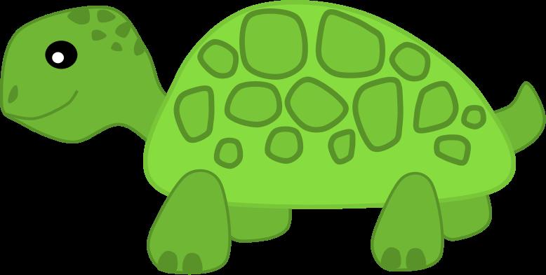 Reptile clipart slow turtle #6