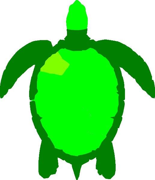 Turtle clipart small #14