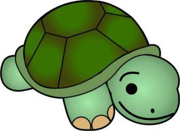 Turtle clipart small #5