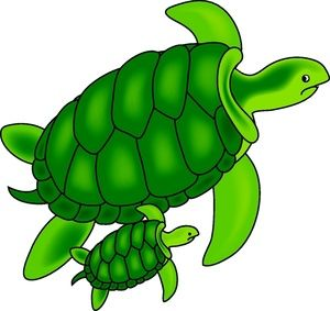 Turtle clipart the word #14