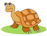 Brown clipart turtle Graphics big Art Kb Clipart