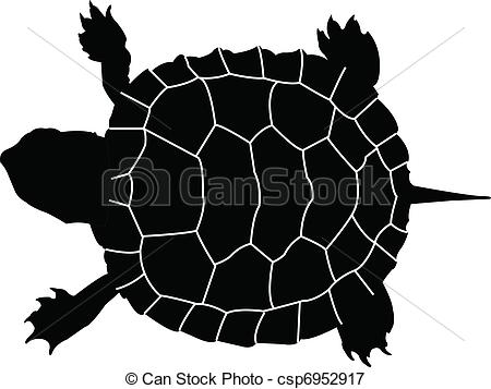 Turtle clipart vector #2