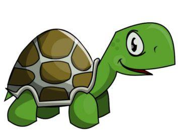 Turtle clipart walking #2
