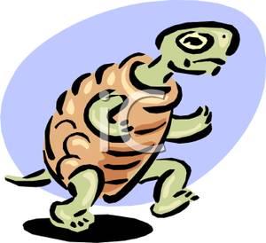 Turtle clipart walking #6