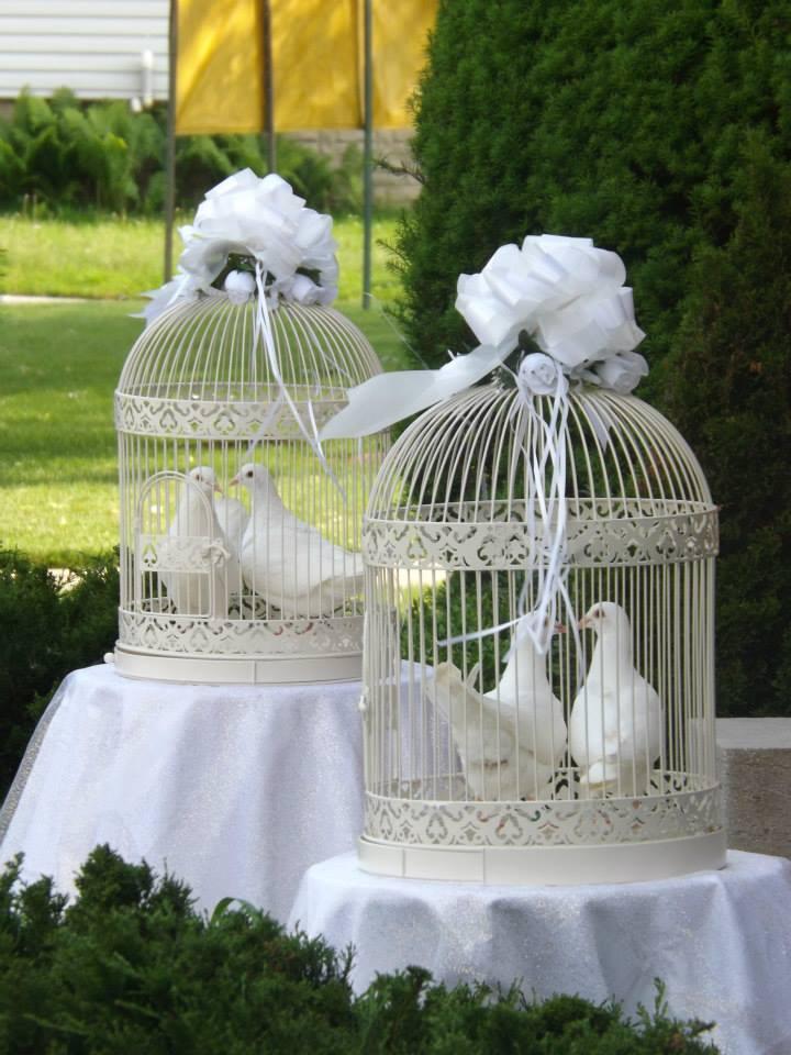 Turtle Dove clipart royal blue wedding #13