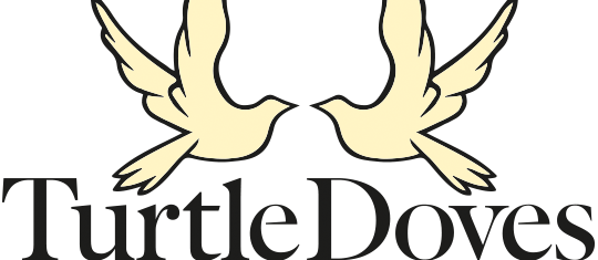 Turtle Dove clipart transparent #11