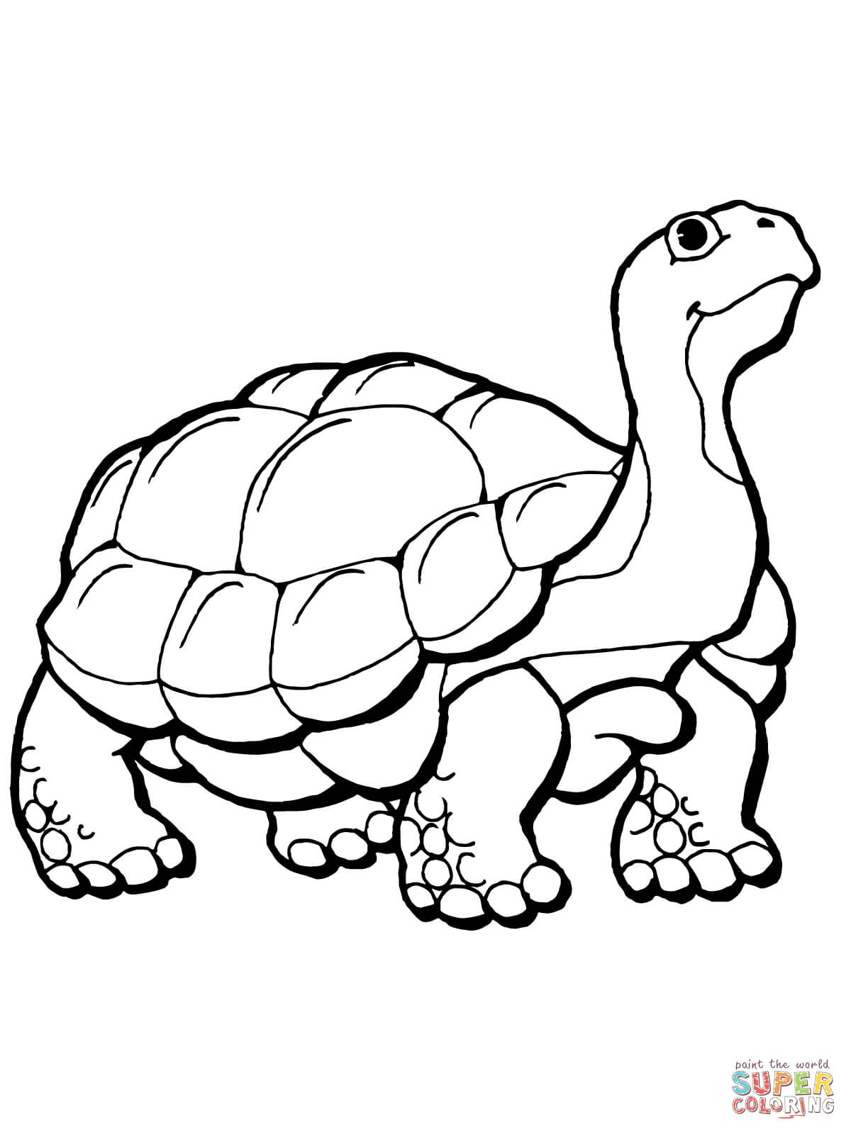 Tortoise clipart coloring page #1