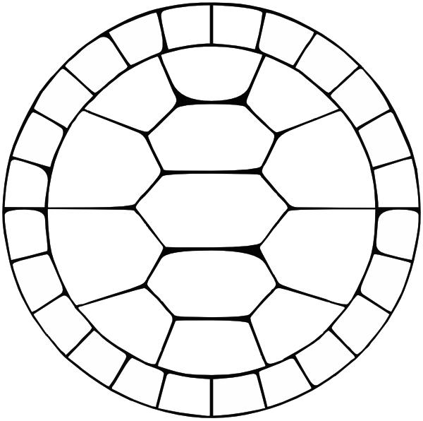 Tortoise clipart pattern #8
