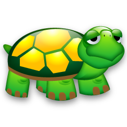 Tortoise clipart pet turtle #10